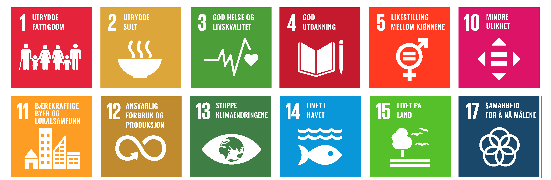12 Bærekraftmål